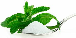 stevia2